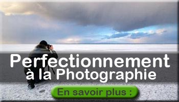formation perfectionnement photographie